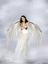 Angel by adunio