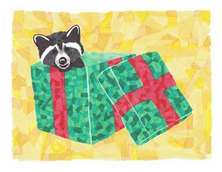 raccoon gift