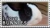 I Love Bunnies Stamp