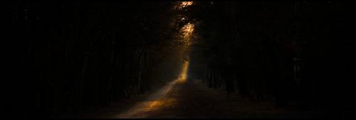 evening walk ... by MOSREDNA