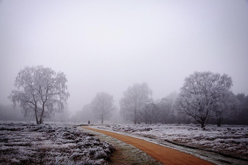 cold day by MOSREDNA