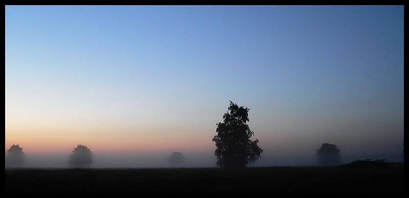 fog.... by MOSREDNA