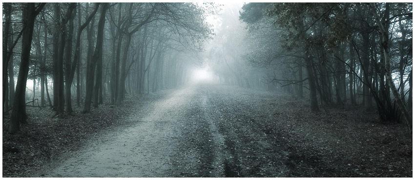 Never ending road.... by MOSREDNA