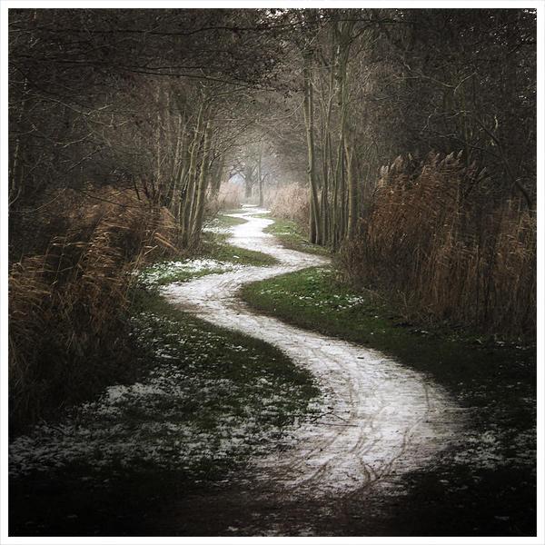 The white path ...