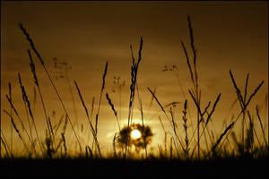 Sunset.... by MOSREDNA