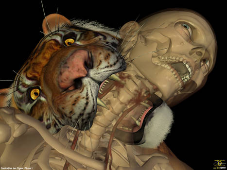 Neck bite of a Tiger: Phase 1