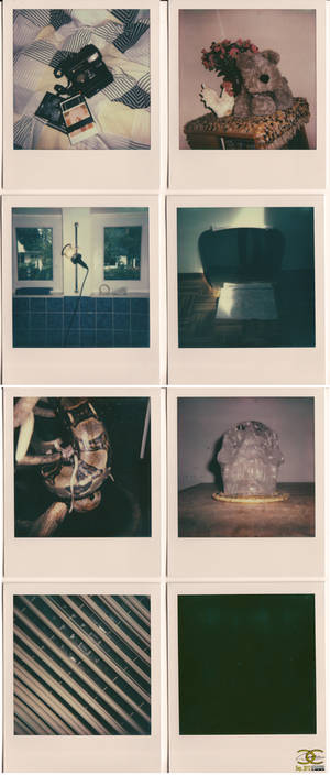 Polaroid resurrection-01