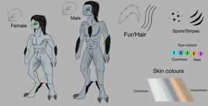 My Sangheili Race: The Ashen