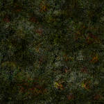 Terrain: Meadow