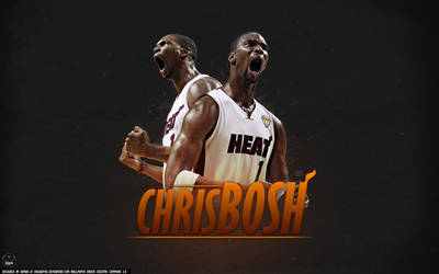 Chris Bosh Wallpaper by drgraphic