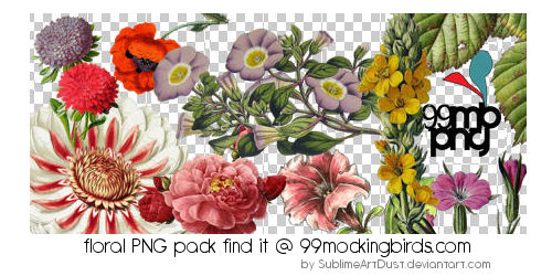 floral png pk by SublimeArtDusT