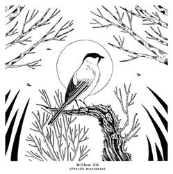 Ink - Willow Tit