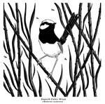 Ink - Fairy Wren