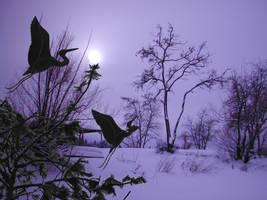 Blue Herons at dawn by Kato-Shiroi