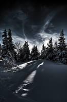 Winter Magic no.2 by Tayterleek