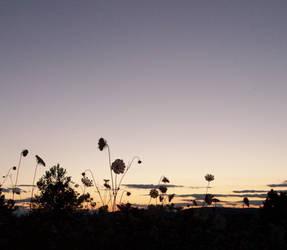 dusk of the earth