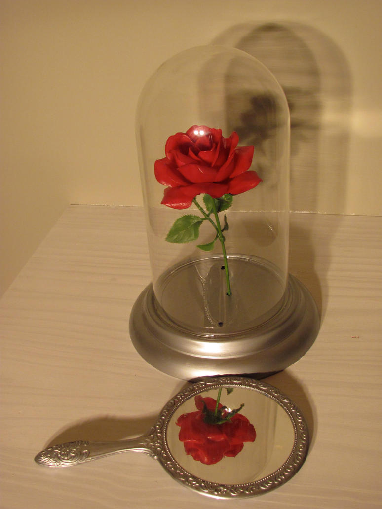 Enchanted rose and mirror by wanderinpikachu on deviantart enchanted rose and mirror by wanderinpikachu izmirmasajfo Choice Image