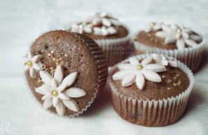 egyszeru csokis cupcakes by Mandy0x