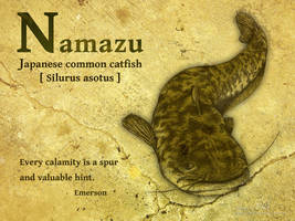 Namazu -Japanese common catfis