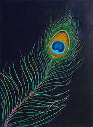 Peacock Feather by seence-art