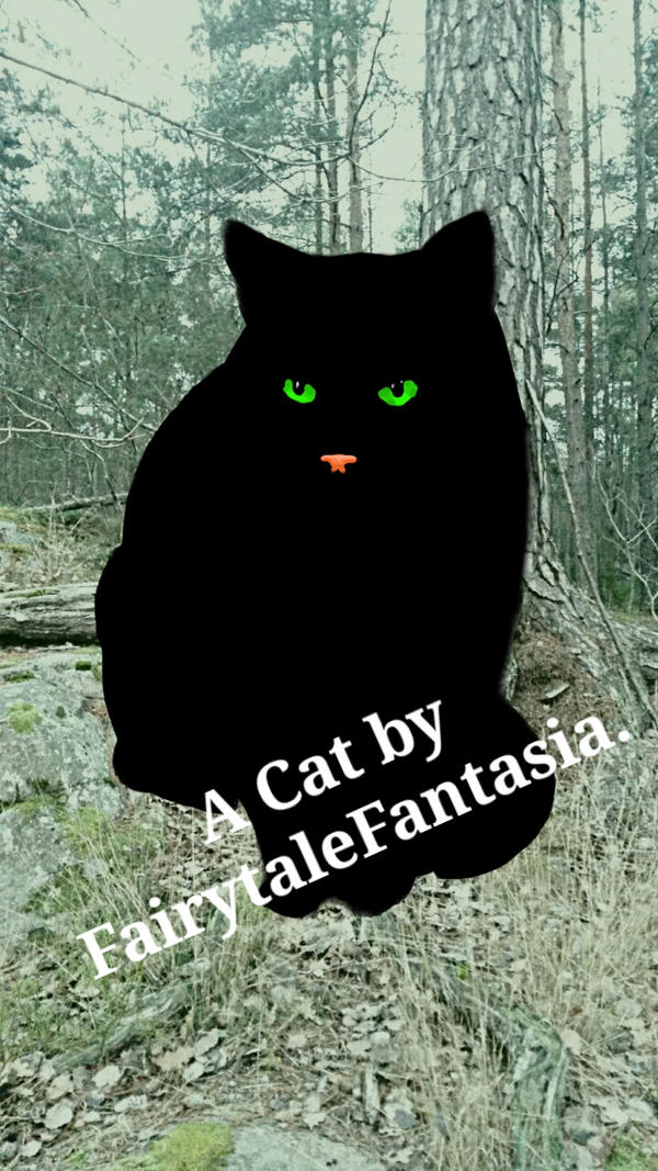 A black cat in the forest by FairytaleFantasia