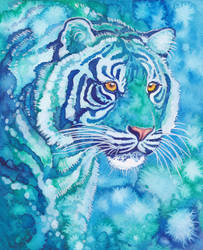 Blue Tiger by Aikya