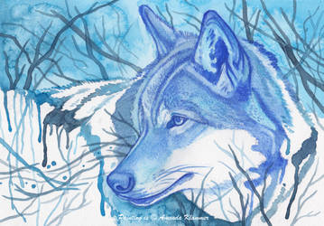 Winter's Presence by Aikya
