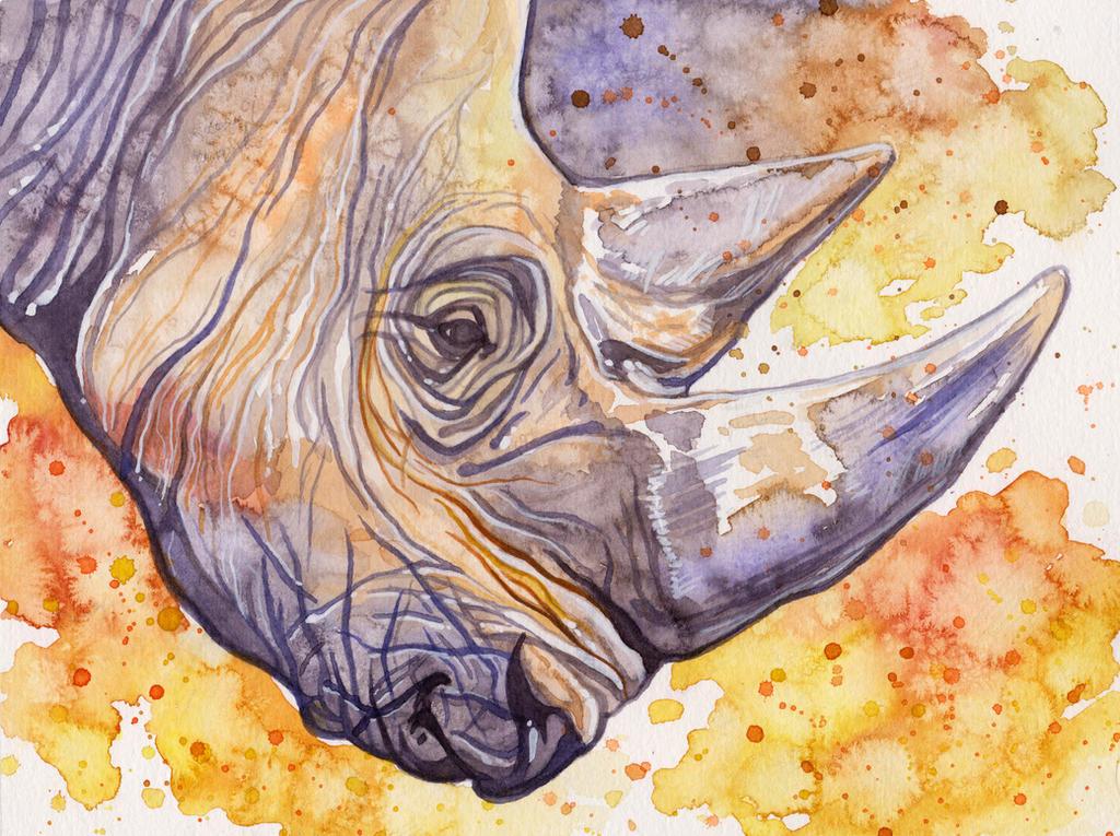 Rhino by Aikya
