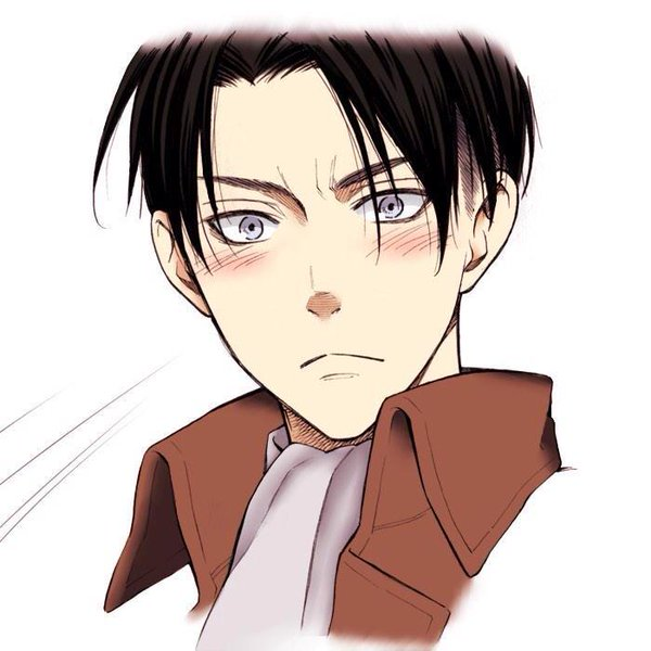 Flowers for Heichou [Levi X Reader] by 0-S-Q-U-I-S-H-0 on DeviantArt