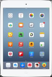 My iPad Mini Retina