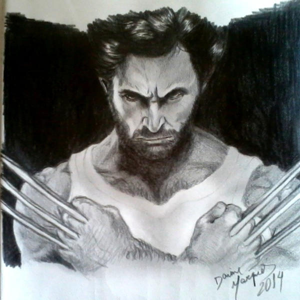 Wolverine by Destincor