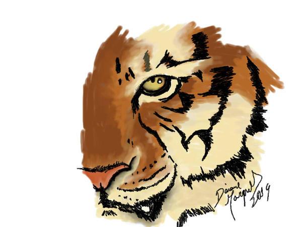 Tiger by Destincor