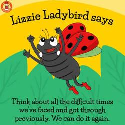 Lizzie Ladybird's advice