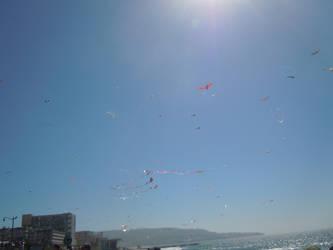 International Kite Festival - Redondo Beach by lightwolf21