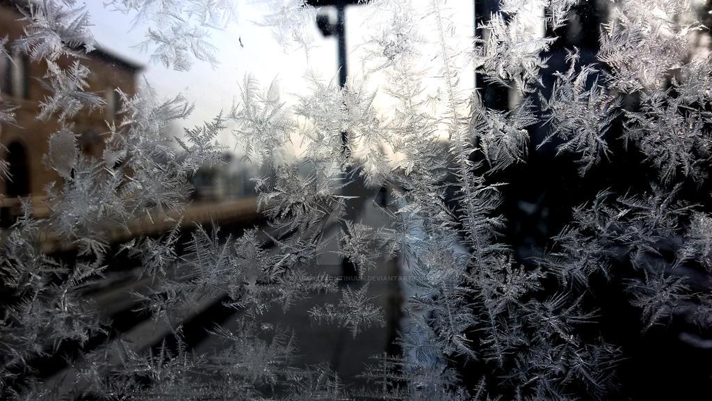 Frozen Fractals. by raumzeitkontinuum
