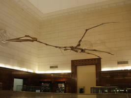 Quetzalcoatlus by symbion-pandora