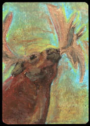 ATC Stag-moose by Haawan