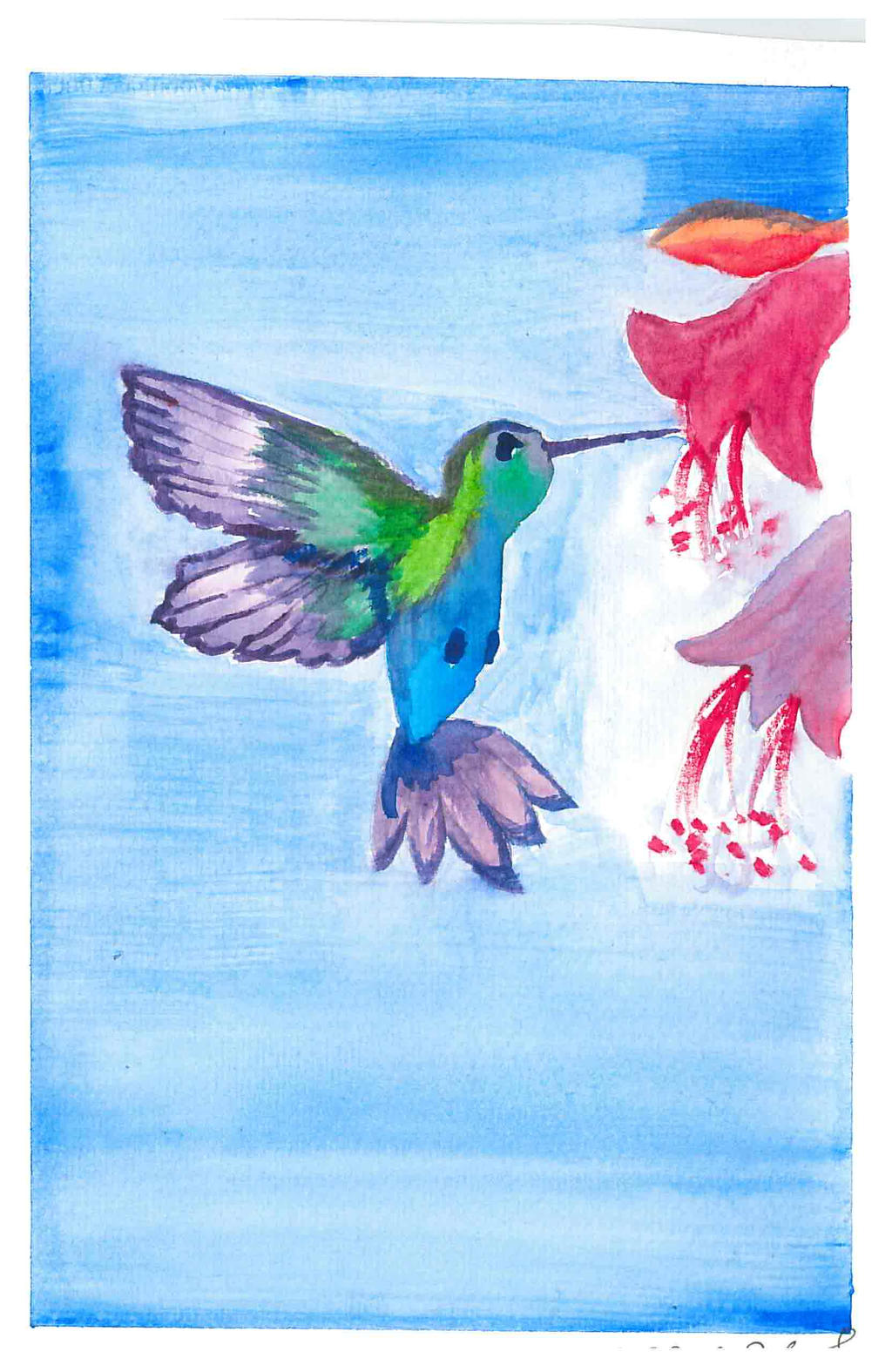 Watercolor hummingbird by vihervirveli