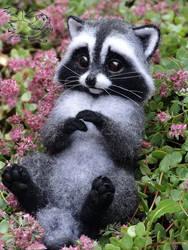 Needle Felted Little Raccoon