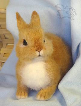 Needle Felted Rabbit / Bunny