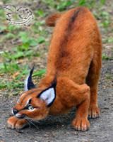 Needle Felted Caracal by YuliaLeonovich