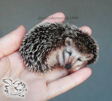 Needle Felted Brooch Hedgehog by YuliaLeonovich