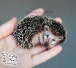 Needle Felted Brooch Hedgehog