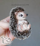 Needle Felted Brooch Hedgehog