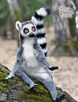 Toy Lemur catta
