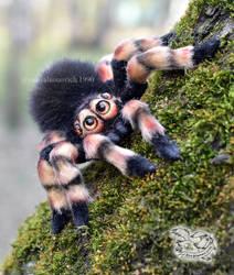 Spider toy by YuliaLeonovich