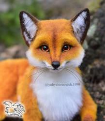 Toy Fox by YuliaLeonovich