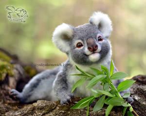 Toy koala