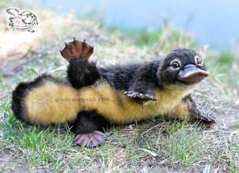 Toy platypus by YuliaLeonovich
