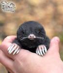 Mole toy